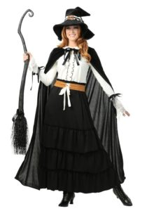 Plus Size Witch Costume Halloween