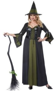 Plus Size Witch Costume for Adults