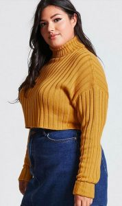Plus Size Crop Top Sweaters
