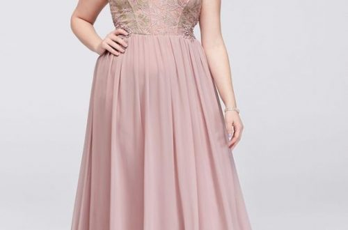 Plus Size Blush Long Dress